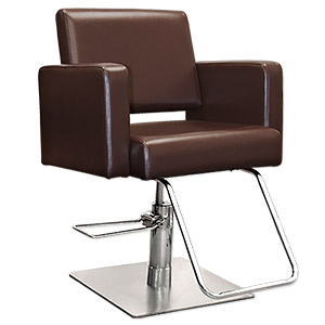 Salon Chairs category image